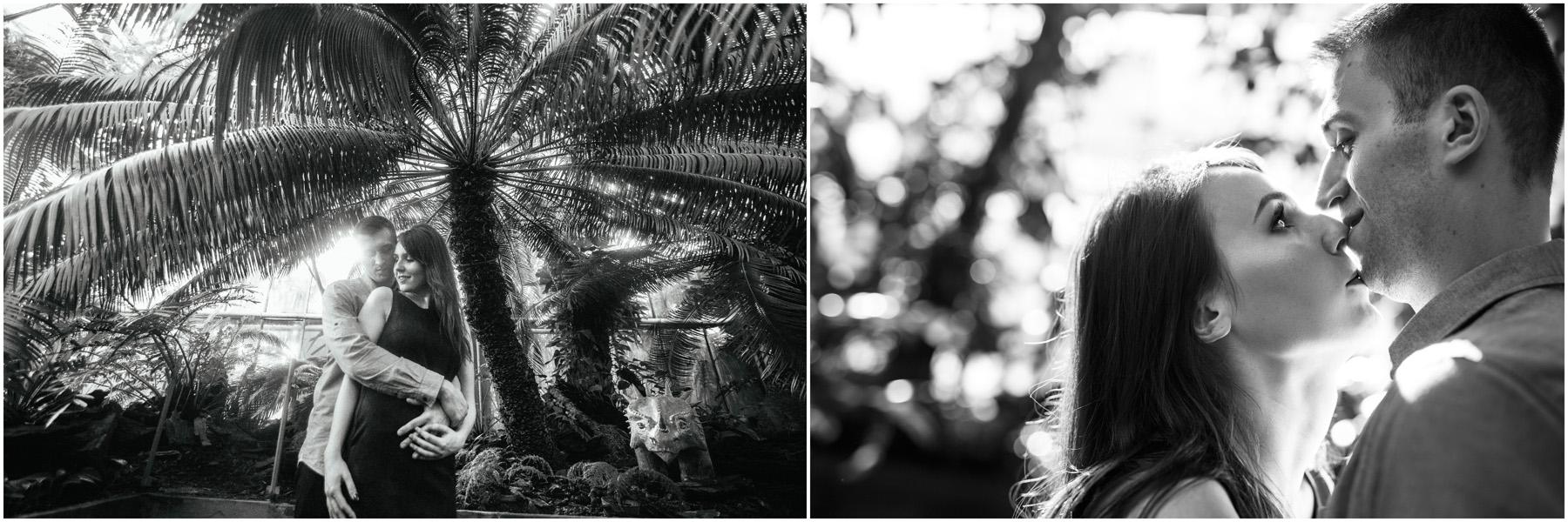 Monika & Damian | sesja w palmiarni 23