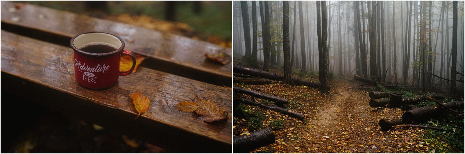 Ania & Szczepan | leśna sesja w Bieszczadach 40