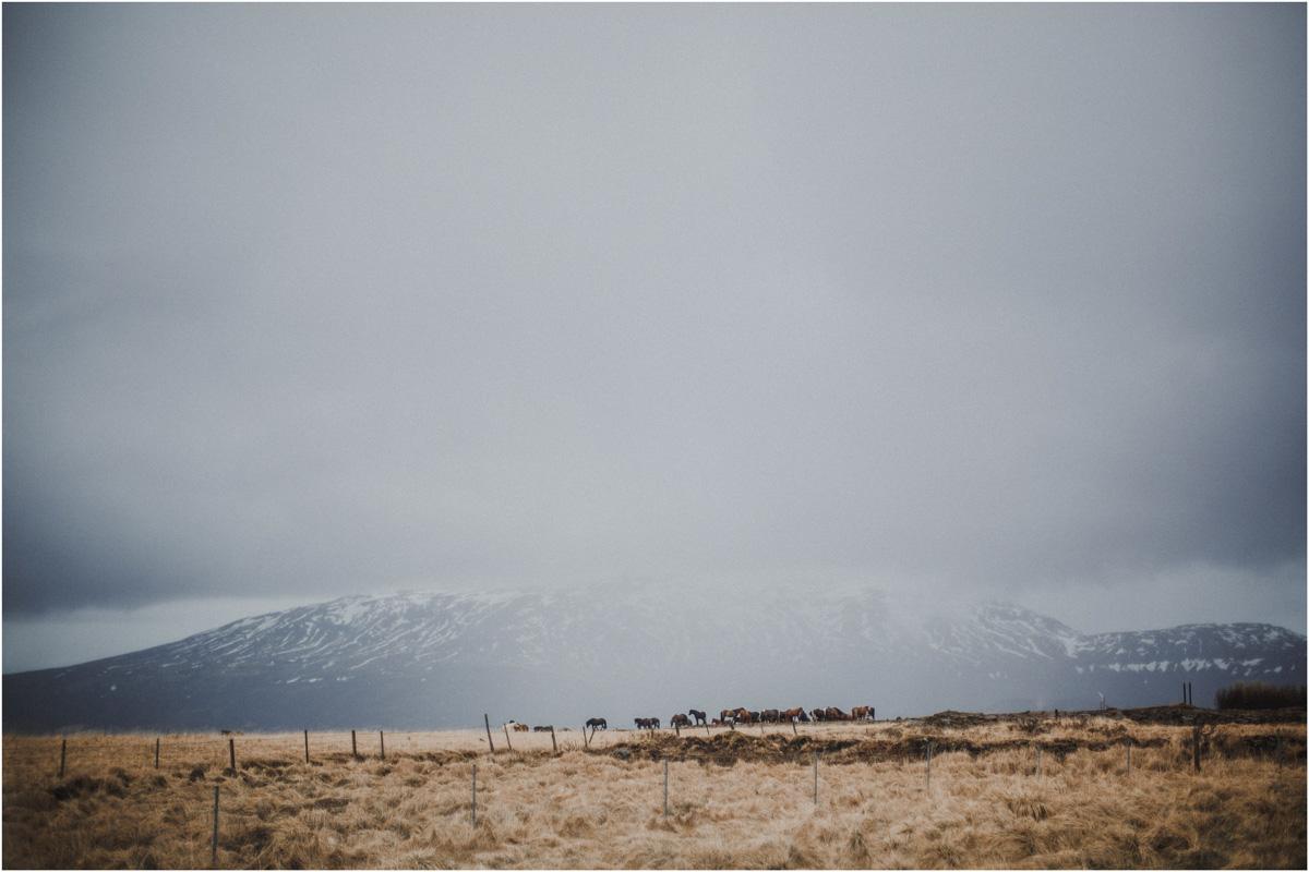ICELAND IV w drodze 11