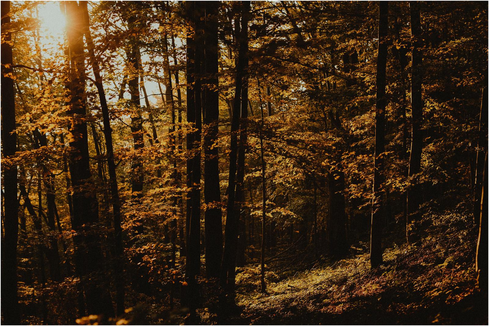 Jesień w Chatce Puchatka, czyli kulisy sesji Gosi i Tomka 22