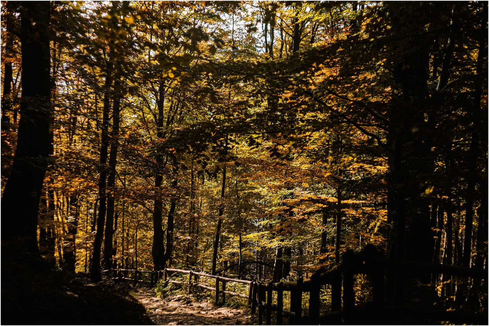 Jesień w Chatce Puchatka, czyli kulisy sesji Gosi i Tomka 73