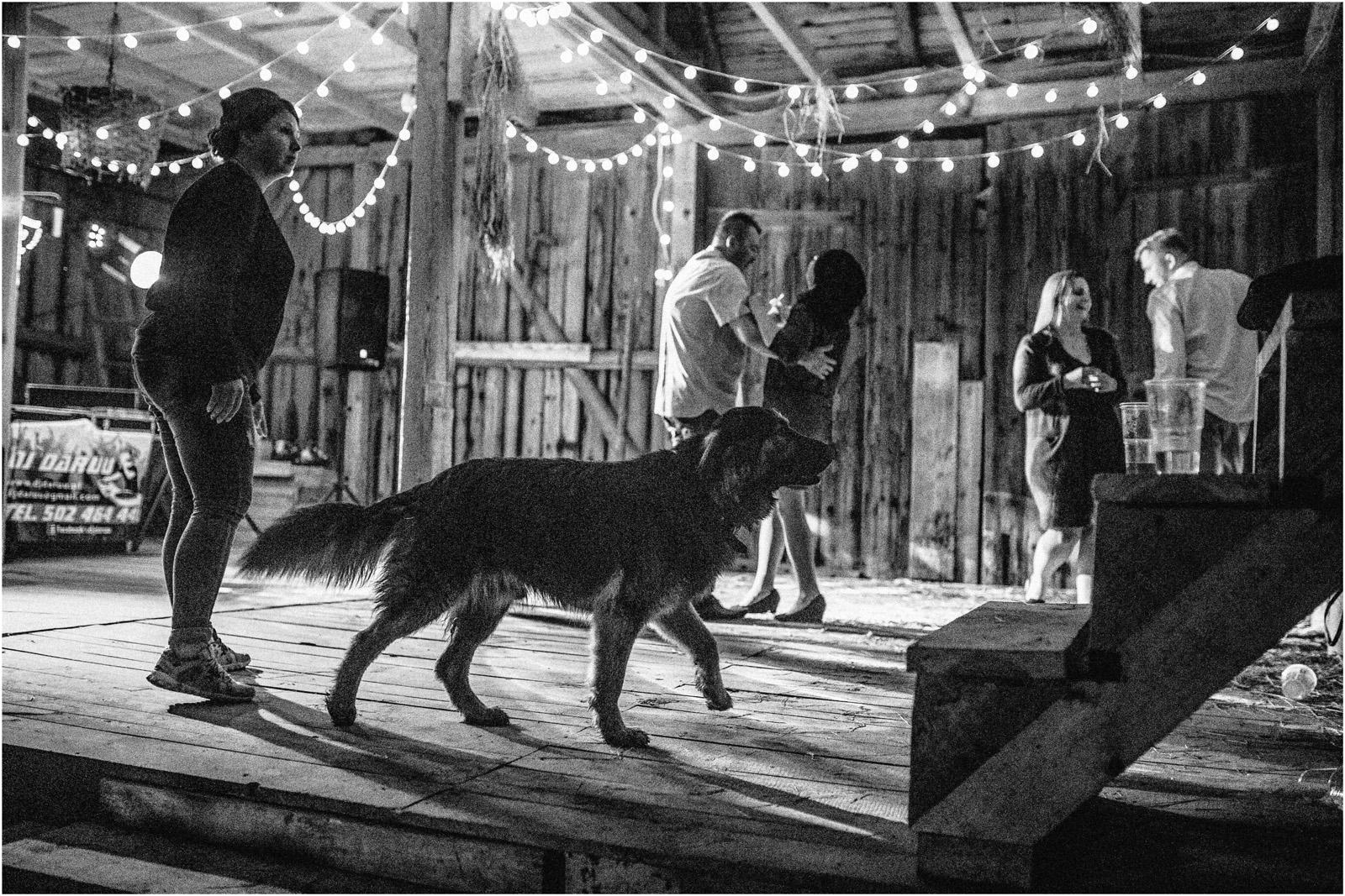 Agatka & Mati | garden party i impreza w stodole 78