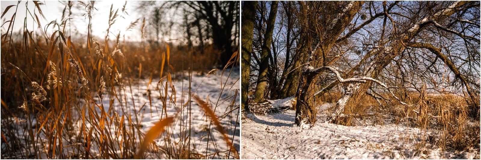 Paulina & Bartek | zimowa sesja nad jeziorem 17