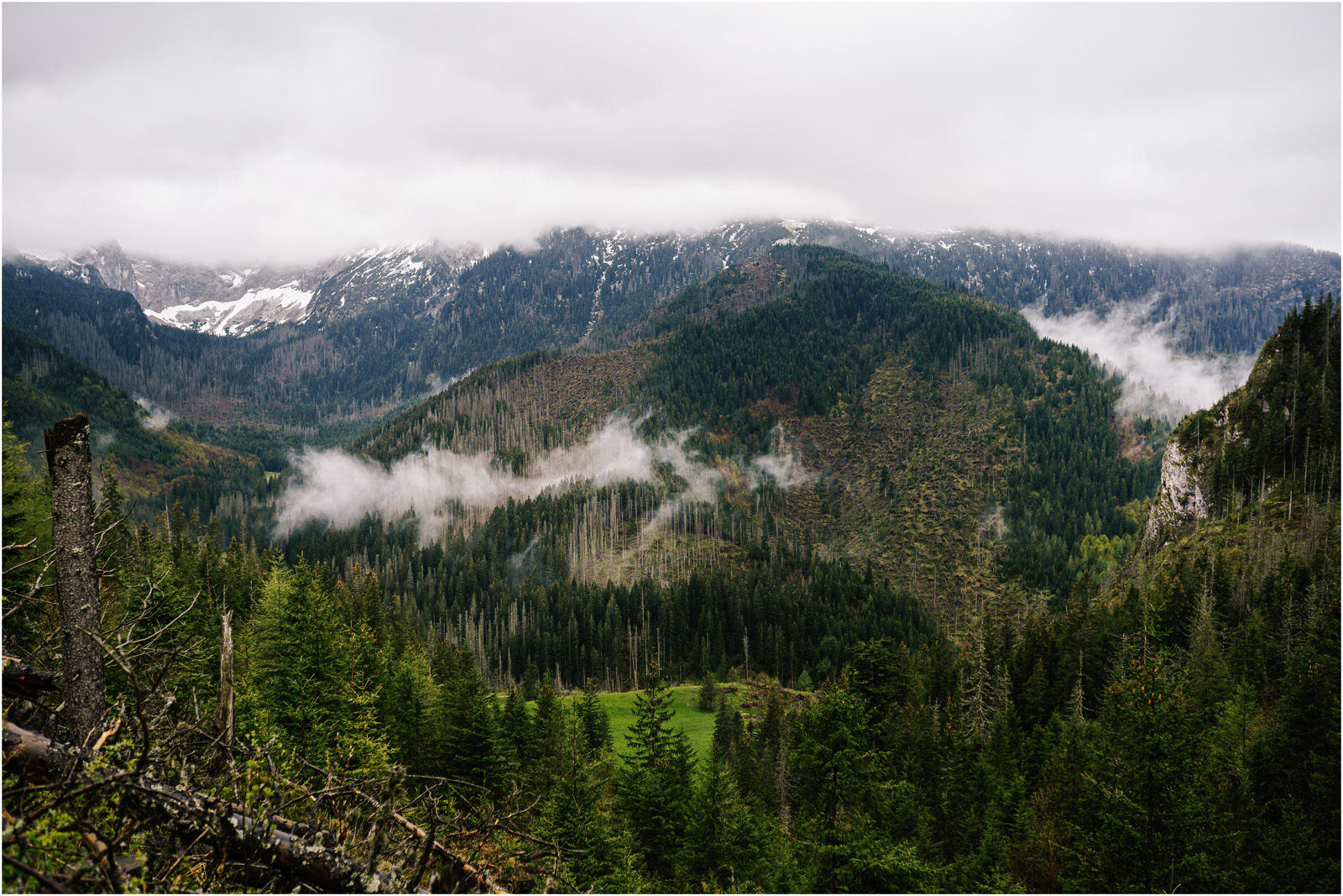 Amanda & Błażej | ślub i sesja w górach 53